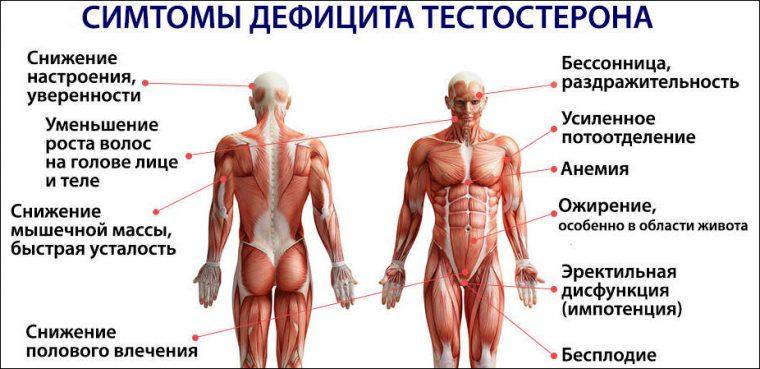 Симптомы снижения тестостерона