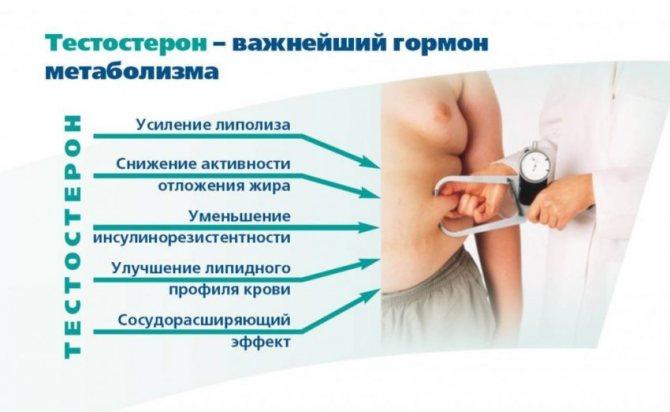 Важность тестостерона для мужского организма